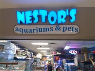 nestor s aquariums amp pets   winnipeg mb   1045r st james