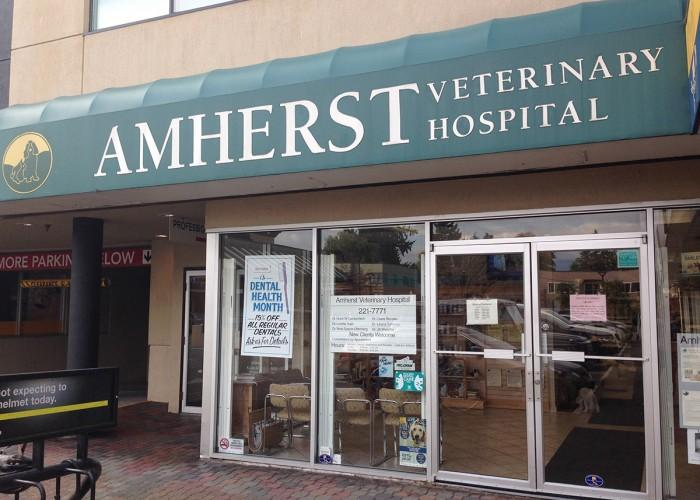 Amherst Veterinary Hospital Ltd - Photo 4