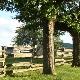 Jaybird Ranch - Stables - 519-856-9595