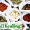 Bao Chi Chinese Herbal Centre (1998) Ltd - Health Food Stores - 780-433-8380