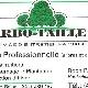 Arbo-Taille - Paysagistes et aménagement extérieur - 450-467-5719