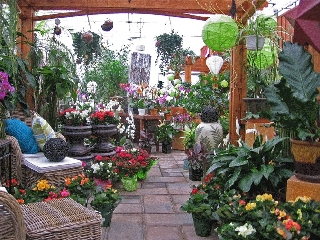 Centre Floral Hollandia - Photo 1