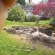 Brads Bobcat Service - Rubbish Removal - 250-755-5713