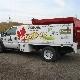 ArborCare Tree Service Ltd - Tree Service - 780-413-9319