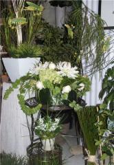 Fleuriste Fleurs de Cactus - Photo 9