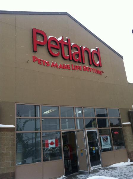 Petland - Photo 6
