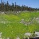 Irrigation Norco Inc - Services et conseillers en environnement - 450-652-7650
