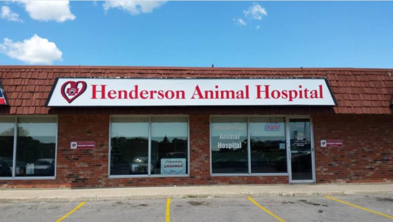 Henderson Animal Hospital - Photo 8