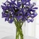 Fleuriste Panier De Fleurs Mascouche - Fleuristes et magasins de fleurs - 450-474-2092