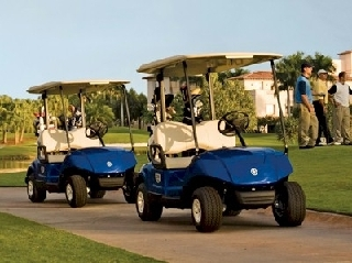 Canadian cart sales st marys on 4 given rd canpages for Yamaha golf cart dealers in florida