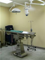Limestone City Animal Hospital - Photo 4