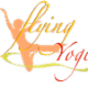 The Flying Yogi - Yoga Courses & Schools - 647-993-9644
