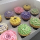 Dolled Up Cupcakes - Bakeries - 905-817-0888