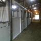 Rosewyn Stables - Stables - 604-897-4744