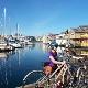 The Pedaler - Bicycle Rental - 778-265-7433