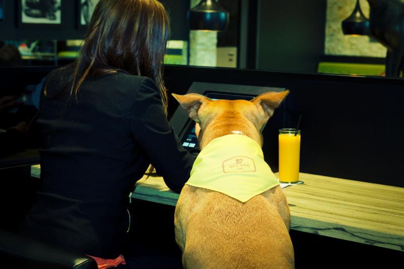 Hot Dog Cafe Brossard