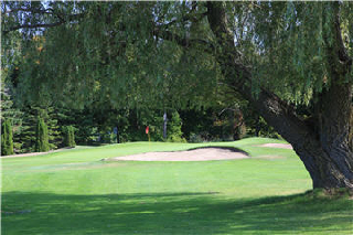 Club De Golf Glendale - Photo 5