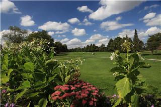 Club De Golf Glendale - Photo 6