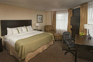 Holiday Inn - Photo 6