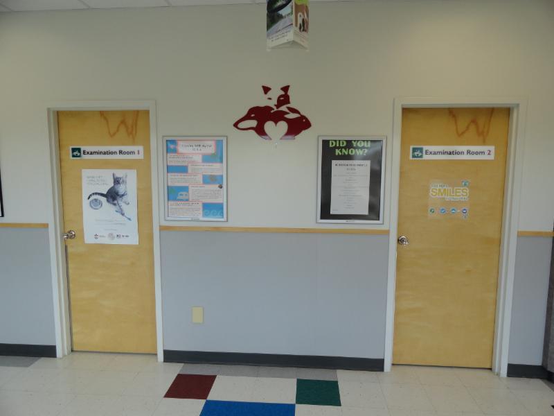 Brentwood Animal Hospital - Photo 4