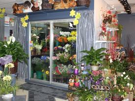 Dessureault Fleuriste Inc - Photo 2