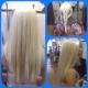 Future Hair Training Centre - Salons de coiffure et de beauté - 604-709-6055