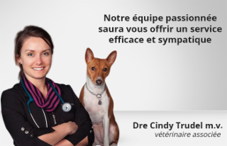 Clinique Vétérinaire Cimon - Photo 3