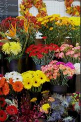Art's Flowers Ltd - Photo 4