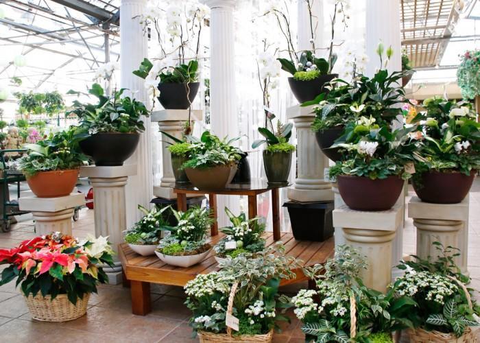 99 Nursery & Florists Inc - Photo 3