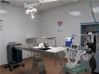 Selkirk Animal Hospital - Photo 8