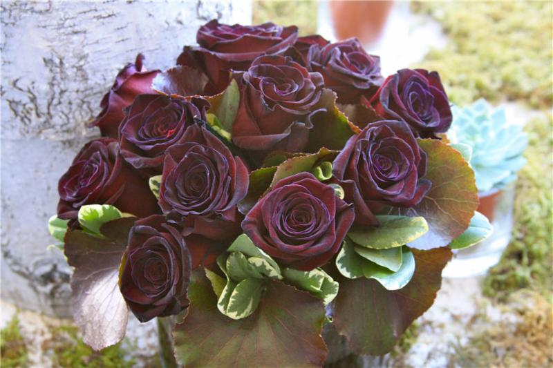 Stavebank Florist - Photo 4