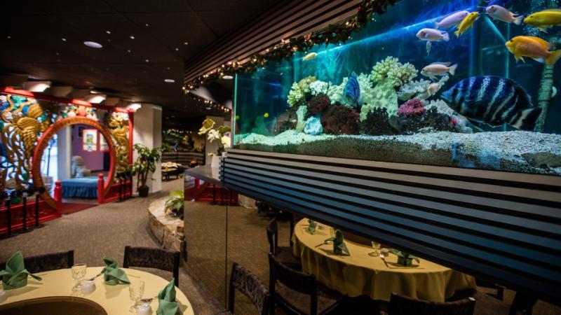 Ming's Restaurant - Photo 6