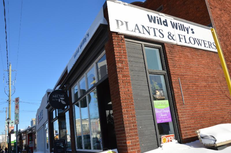Wild Willy's Plants & Flowers - Photo 2