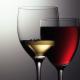 The Wine Making Place Ltd - Matériel de vinification et de production de la bière - 905-607-1459