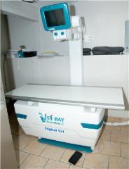 Hôpital Vétérinaire de la Seigneurie - Photo 6