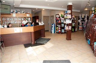 Hôpital Vétérinaire de la Seigneurie - Photo 3