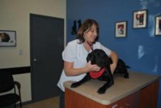 Clinique Vétérinaire De La Montagne - Photo 3