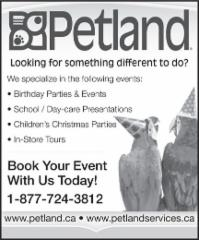 Petland - Photo 10