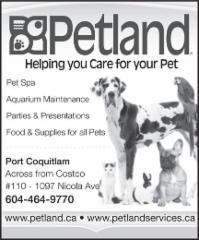 Petland - Photo 2