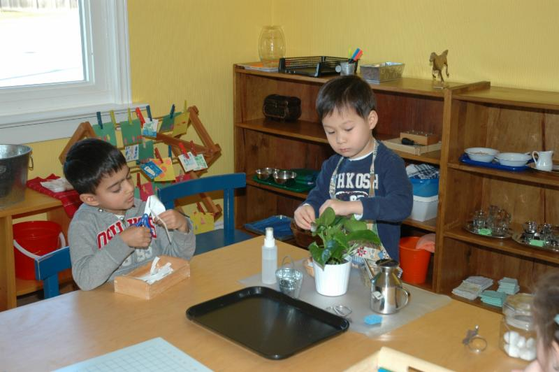York Montessori School - Photo 4