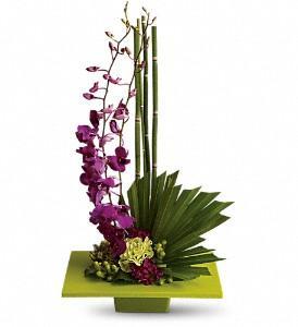 Surrey Flower Shop - Photo 2
