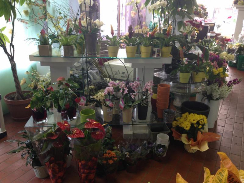 Richmond Florists - Photo 3