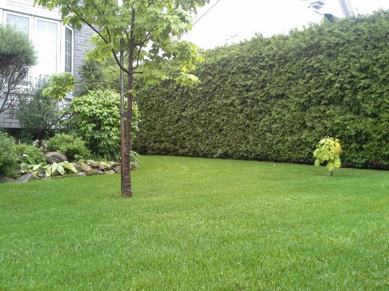 Entretien pelouse laval laval qc 73 rue d patie for Service entretien pelouse