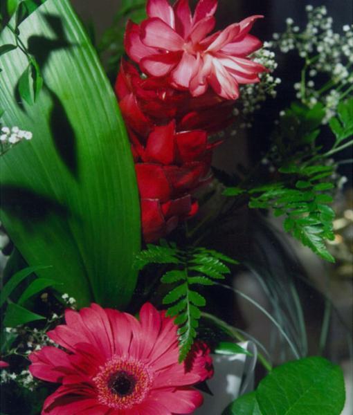 Fleuriste la maison des fleurs opening hours 769 boul for Fleuriste fleurs