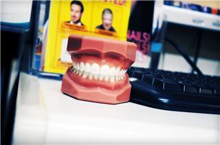 Concept Dental - Photo 6