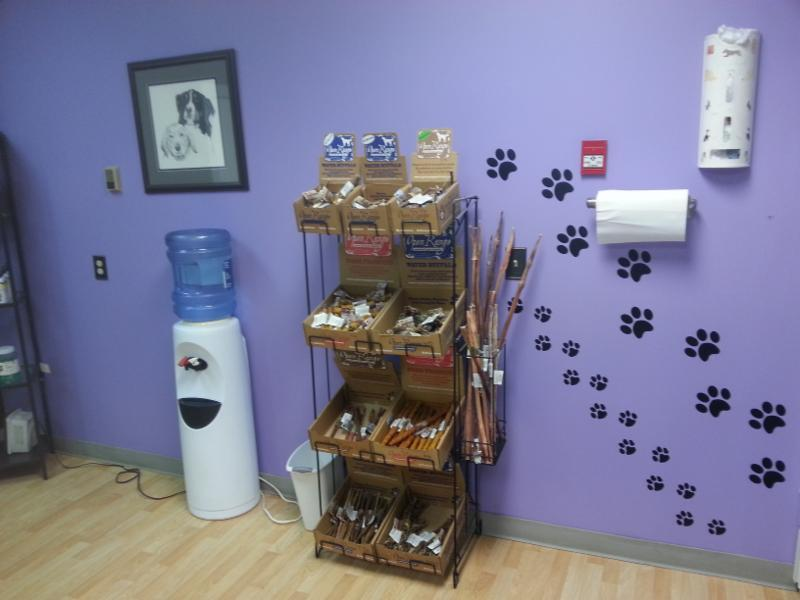 4 Paws Grooming - Photo 6