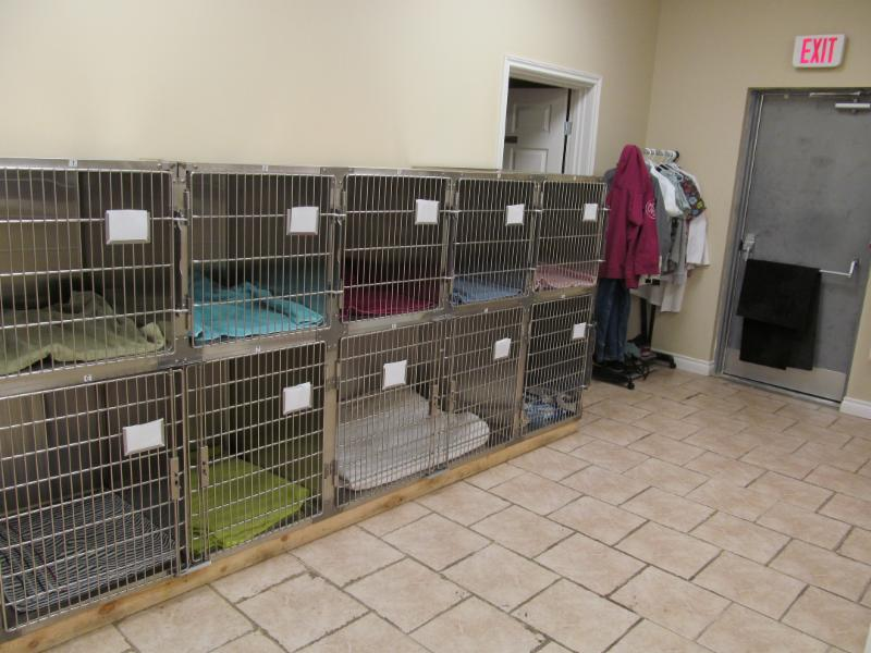 Edmonton Spay and Neuter Clinic - Photo 4