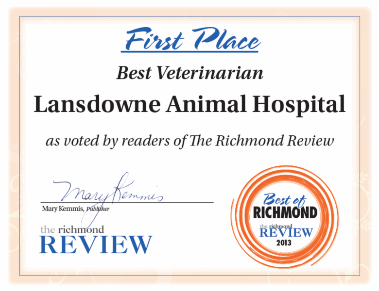 Lansdowne Animal Hospital - Photo 2