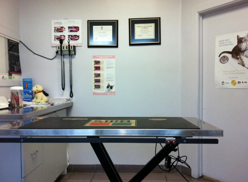 Lansdowne Animal Hospital - Photo 4