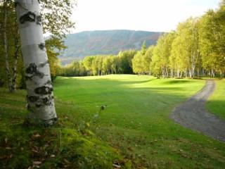 Club de Golf Mont Ste-Anne - Photo 9